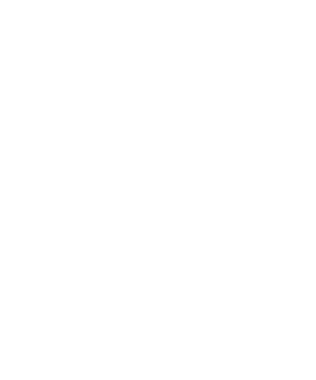 Nederland-vector-outline-wit